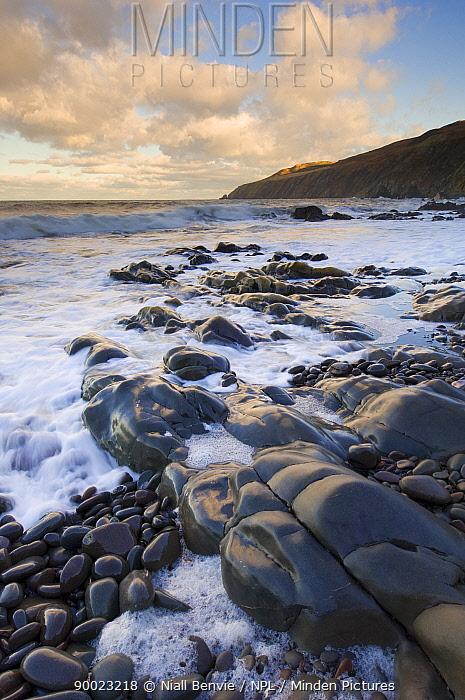 Rocky North Sea foreshore, Scottish borders, Scotland, UK  -  Niall Benvie/ npl