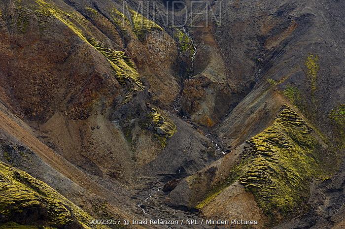 Stream meandering though barren landscapes of Landmannalaugar highlands, central Iceland  -  Inaki Relanzon/ npl