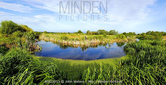 Catcott Marsh, Somerset Levels, UK  -  John Waters/ npl