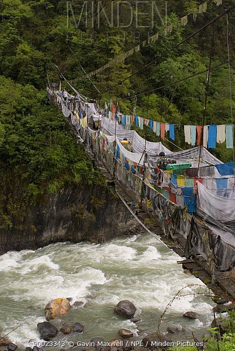 Rope bridge adorned with prayer flags, Yarlung Gorge, Tibet, May 07 'Wild China' series  -  Gavin Maxwell/ npl