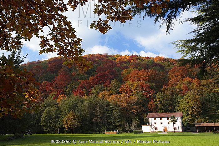 House nestled against autumnal trees in Se�orio de Bertiz Natural Park, Navarra, Spain  -  Juan Manuel Borrero/ npl