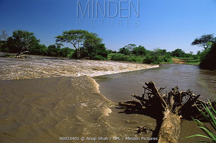River in flood, Serengeti National Park, Tanzania  -  Anup Shah/ npl