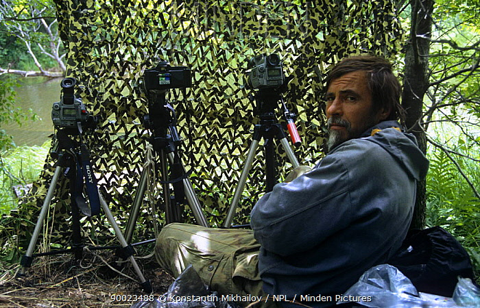 RussianpPhotographer Yuri Shibnev in hide, filming and photographing beside river in Primorsky, Far East Russia  -  Konstantin Mikhailov/ npl