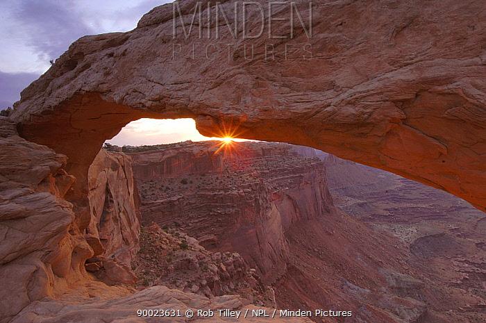 Mesa Arch Sunrise, Canyonlands NP, Utah, USA  -  Rob Tilley/ npl