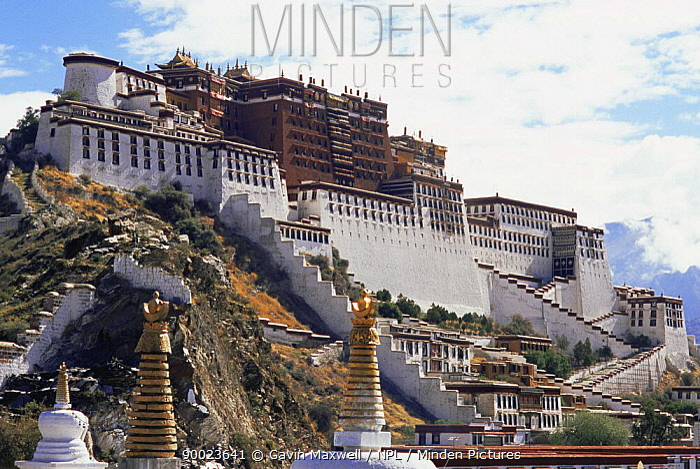 The Potala, Lhasa, Tibet The Dalai Lama's ex-residence 2007  -  Gavin Maxwell/ npl