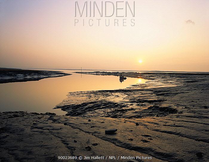 Mud flats at sunset, Brue, Parrett Estuary Somerset, England, UK  -  Jim Hallett/ npl