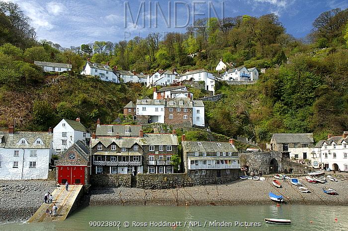 Clovelly harbour, Devon, UK  -  Ross Hoddinott/ npl