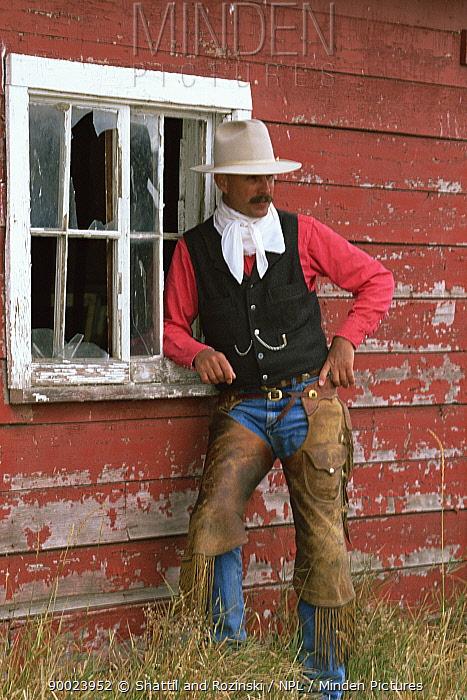 Cowboy leaning against wooden barn, Colorado, USA Model released  -  Shattil & Rozinski/ npl