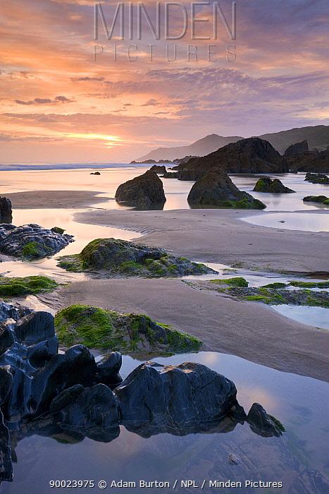 Rockpools and sand at Combesgate Beach in North Devon, England  -  Adam Burton/ npl