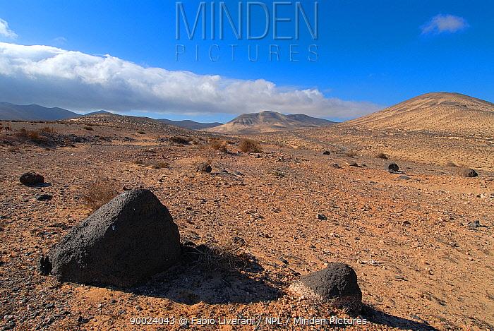Istmo de la Pared (Isthmus of the Wall) Rural Reserve, Fuerteventura, Canary Isles, Spain, September 2007  -  Fabio Liverani/ npl