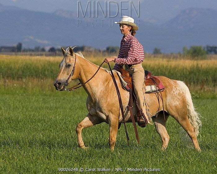 Girl riding palomino Appaloosa, Longmont, Colorado, USA, model released  -  Carol Walker/ npl