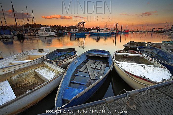 Boats tied up in Lymington harbour at sunset, Hampshire, England  -  Adam Burton/ npl