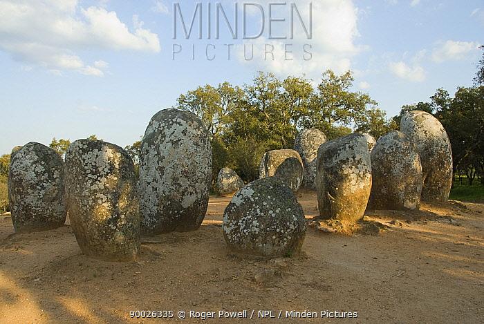 Ancient Standing stones, Cromlech, nr Evora, Portuga l4-5,000 BC  -  Roger Powell/ npl