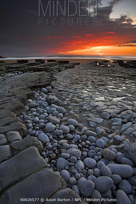 Pebbles, wave-cut platform and sedimentary cliffs at Dunraven Bay, Southerndown, Wales  -  Adam Burton/ npl