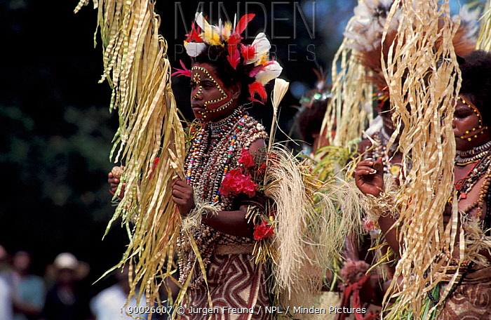 Female dancer at Sing-Sing celebration with grass skirt, face tattoo and shell jewellery Tufi, Oro Province, Papua New Guinea  -  Jurgen Freund/ npl