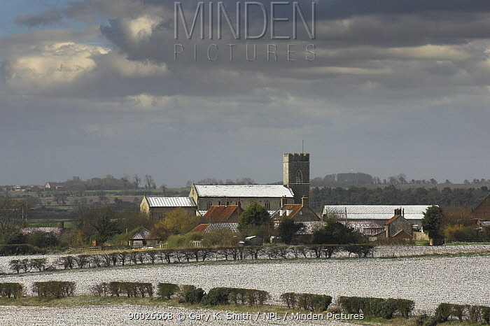 Village with church lightly covered in snow, Wighton, Norfolk, UK  -  Gary K. Smith/ npl