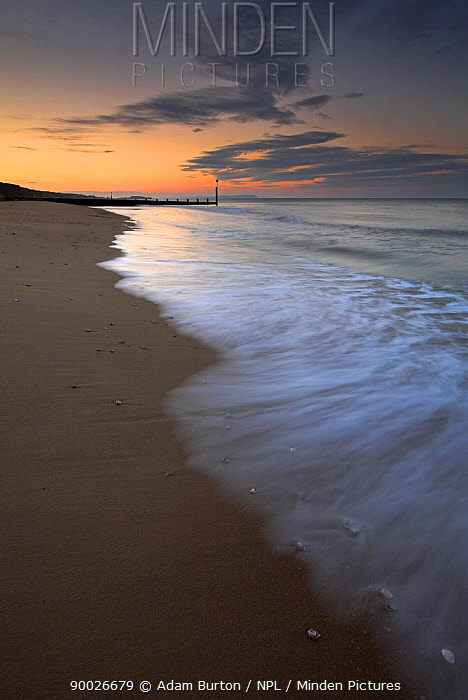 Sunrise over Bournemouth Beach, Dorset, England  -  Adam Burton/ npl