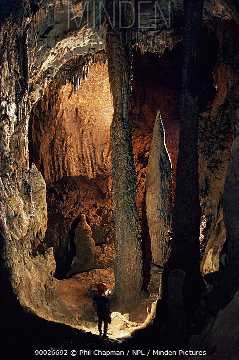 Clearwater cave, Mulu National Park, Sarawak, Indonesia Cave is 300 ft tall  -  Phil Chapman/ npl