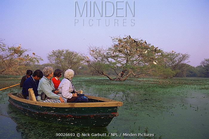 Tourists watching Painted storks (Mycteria leucocephala) from boat, Keoladeo Ghana NP, Bharatpur, India  -  Nick Garbutt/ npl