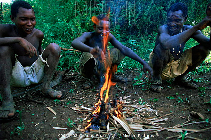 Three Hadzabe bushmen squatting round fire, preparing to cook Lake Eyasi, Tanzania  -  Anup Shah/ npl