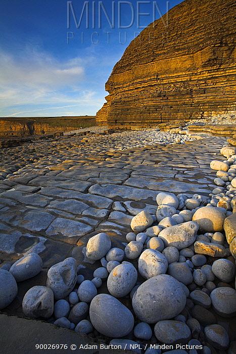 Pebbles, wave-cut platform and layered sedimentary cliffs at Dunraven Bay, Southerndown, Wales  -  Adam Burton/ npl