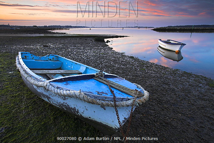 Small boats in Poole Harbour at dawn, one pulled up on the muddy beach Dorset, England  -  Adam Burton/ npl