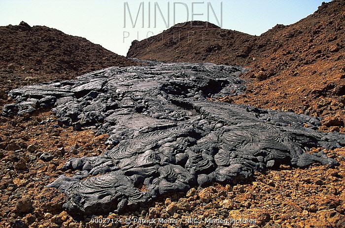 Lava flow, Sullivan Bay, Santiago Is, Galapagos  -  Patrick Morris/ npl