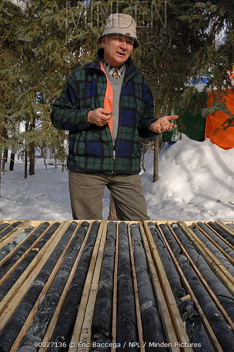 Geologist studying and explaining mineral cores, Northwest Territories, Canada March 2007  -  Eric Baccega/ npl