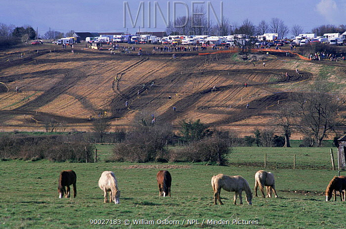 Alternative use of agricultural land Motorcycle Moto X racing, with horses grazing in foreground, Gloucestershire, UK  -  William Osborn/ npl