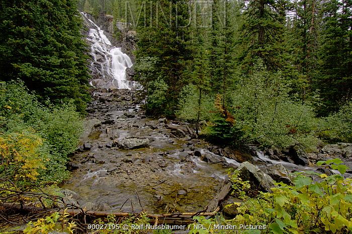 Hidden Falls, Jenny Lake, Grand Teton NP, Wyoming, USA  -  Rolf Nussbaumer/ npl