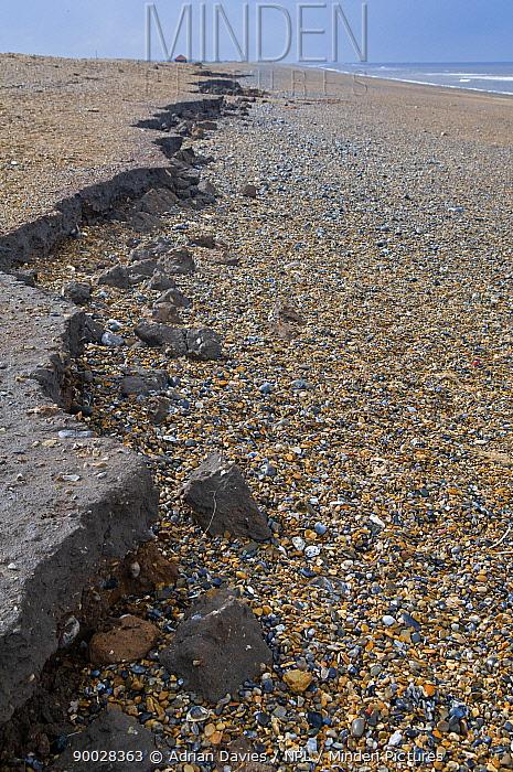 Beach following storm, showing coastal erosion, Cley, Norfolk, UK  -  Adrian Davies/ npl