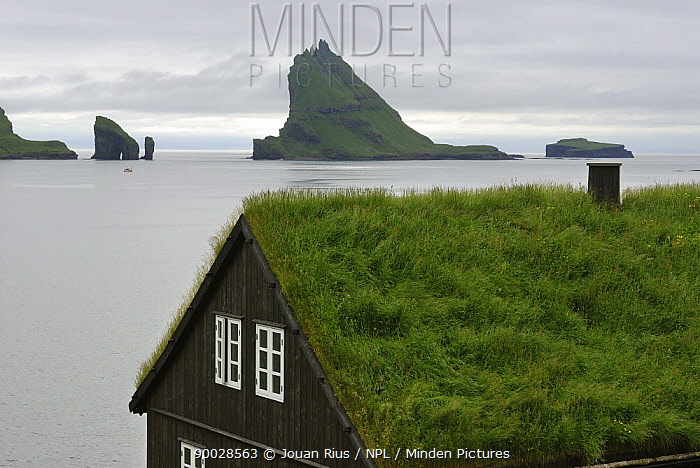 Traditional house with grass growing on its roof in front of Gasholmur Island, Faroe Islands  -  Jouan & Rius/ npl