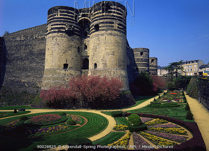 Castle, Chateau d'Angers fortress and gardens, Angers, France, Europe  -  Kirkendall-spring/ npl