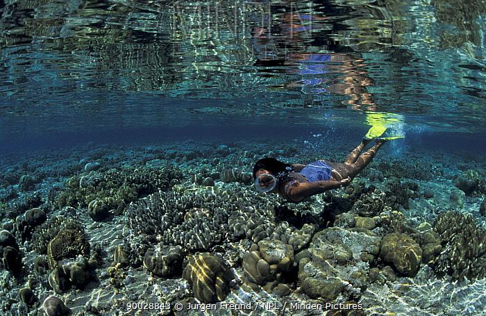 Woman Snorkler swimming over coral reef, Underwater Indo-Pacific  -  Jurgen Freund/ npl