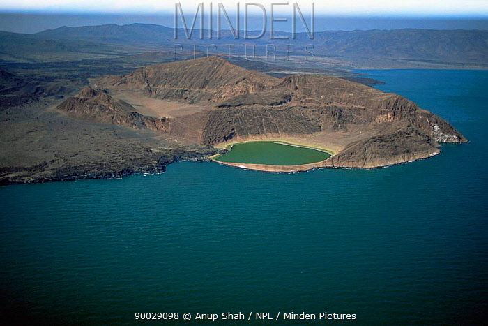 Aerial view of southern end of Lake Turkana (formerly Lake Rudolf) The worlds largest permanent desert lake, UNESCO world heritage site, Kenya  -  Anup Shah/ npl