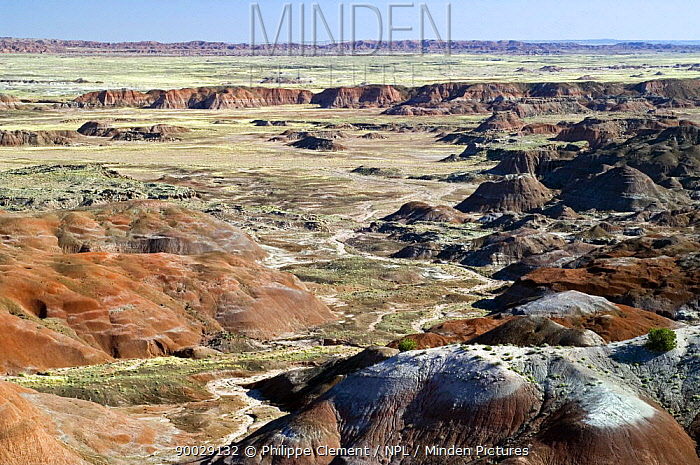 The Painted Desert, part of the Petrified Forest National Park stretches some 50,000 acres of colorful mesas, butes, and badlands, Arizona, USA May 2007  -  Philippe Clement/ npl