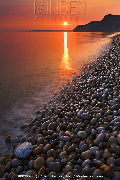 Sunset over the pebbly shore at Eype, Jurassic Coast World Heritage Site, Dorset  -  Adam Burton/ npl