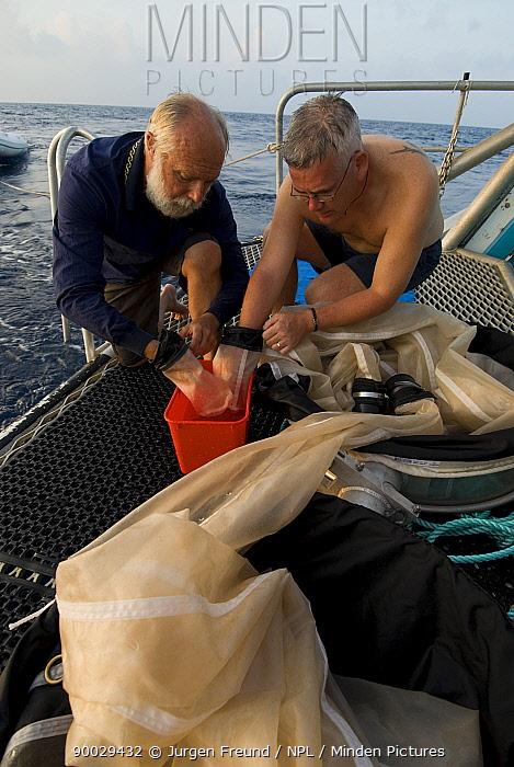 Checking a plankton net on a research vessel (researchers from Central Queensland University, Rockhampton) Queensland, Australia  -  Jurgen Freund/ npl