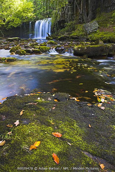 Sgwd Ddwli Waterfall, Brecon Beacons National Park, Powys, Wales  -  Adam Burton/ npl