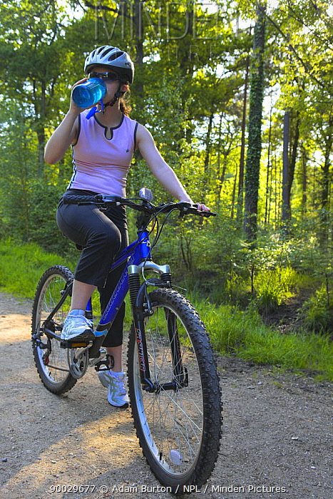 Woman drinking while out on a mountain bike ride, New Forest, Hampshire, England Model released  -  Adam Burton/ npl