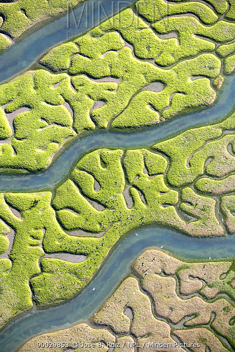 Aerial view of the Bay of Cadiz delta, San Fernando, C�diz, Spain  -  Jose B. Ruiz/ npl