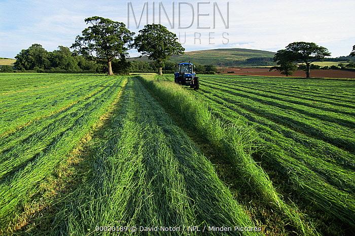 Cutting grass for silage, Holnicote, Somerset, UK  -  David Noton/ npl