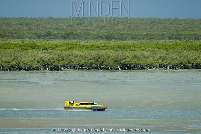 Hovercraft and mangrove swamps, Broome, Western Australia  -  Jurgen Freund/ npl