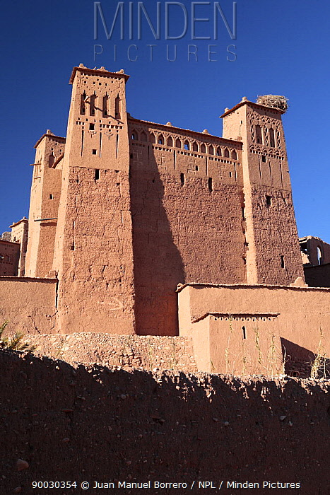Kasbah of Ait Benhaddou with a stork's nest on one of its towers, Morocco December 2007  -  Juan Manuel Borrero/ npl
