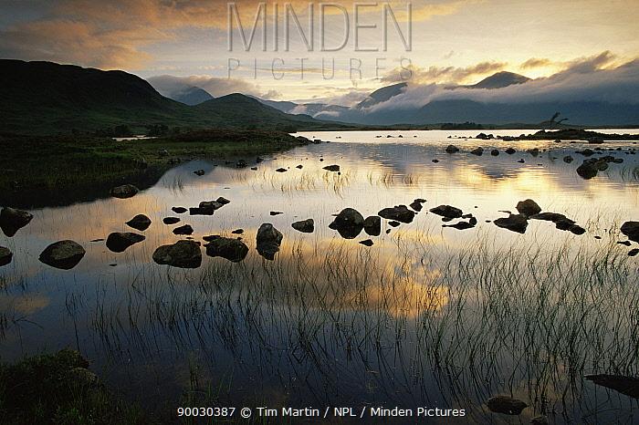 Highlands landscape, Scotland, UK  -  Tim Martin/ npl