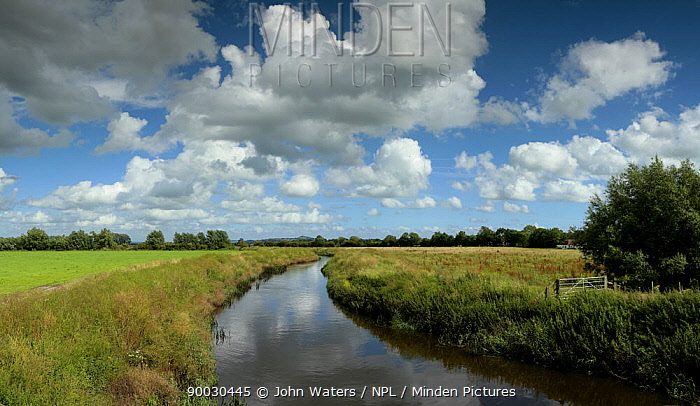 River Brue, near Westhay, Somerset Levels, Somerset, UK, Digital Composite Panorama  -  John Waters/ npl
