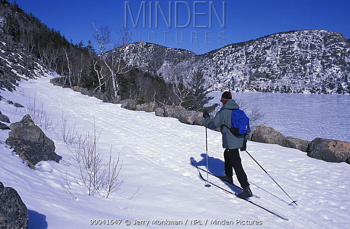 Cross country skiing on the Carriage Roads next to Jordan Pond and the Bubbles, Acadia NP, Maine, USA  -  Jerry Monkman/ npl