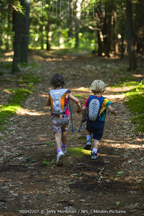 Two children running through the woods, North Hampton, New Hampshire, USA, model released  -  Jerry Monkman/ npl