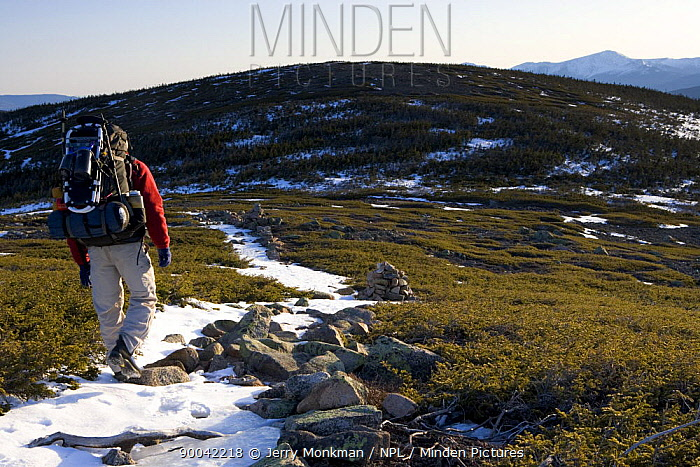 A backpacker on the Appalachian Trail on Mt Guyot, The Twinway, White Mountains, New Hampshire, USA Mt Washington is in the distance Early spring Sunrise  -  Jerry Monkman/ npl