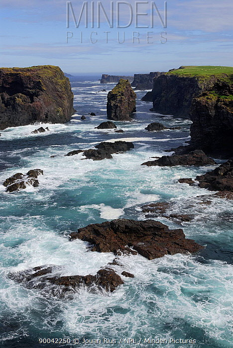Sea cliffs of the Eshaness Peninsula, Mainland West, Shetland Islands, Scotland, UK  -  Jouan & Rius/ npl